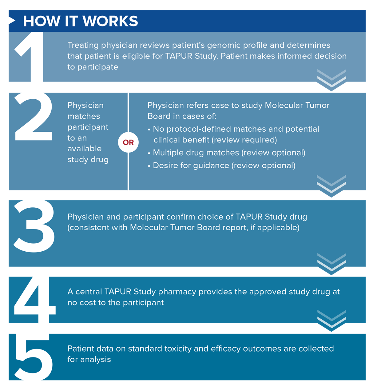 TAPUR Infographic: How it Works